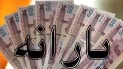 یارانه جدید در راه است/به هر ایرانی چقدر یارانه تعلق میگیرد؟