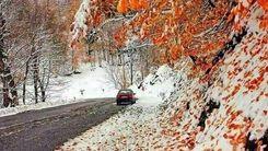 مرز میان پاییز و زمستان مشخص شد+عکس دیدنی