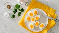 خوردن تخم مرغ را به این دلایل فراموش نکنید + جزئیات مهم