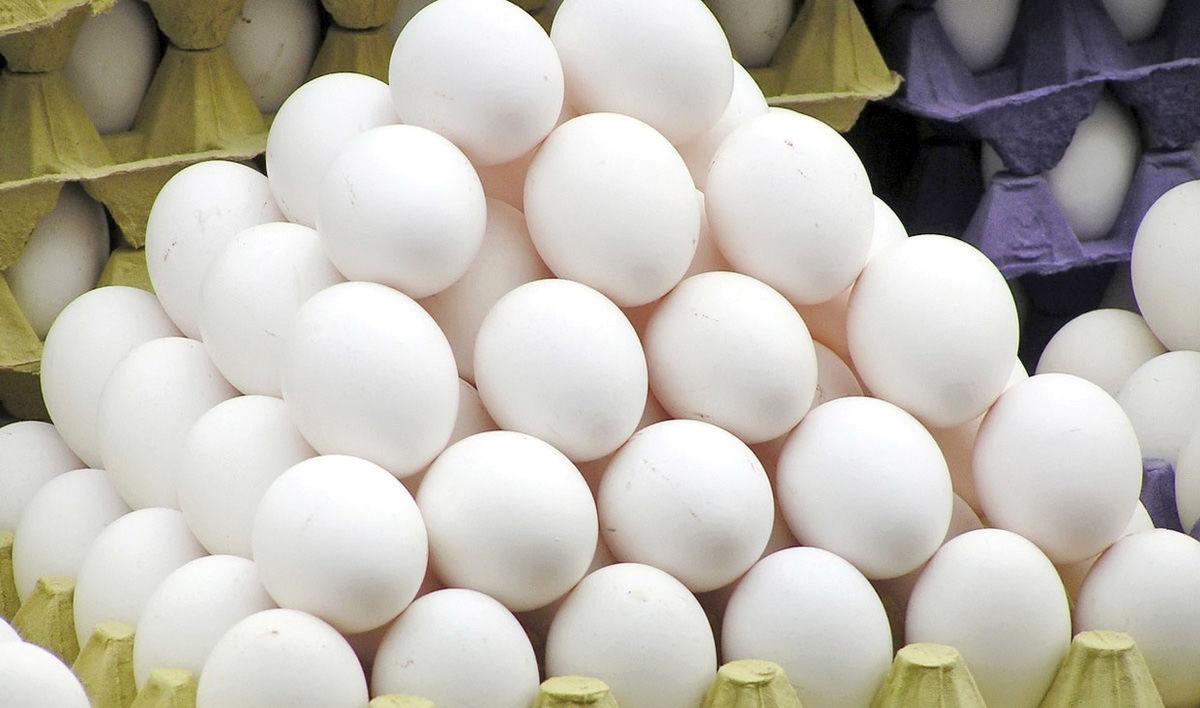 تخم مرغ طلا شد/ گرانی باورنکردنی در بازار