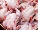 پیش بینی قیمت مرغ/قیمت مرغ گران می شود؟